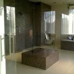 Glas in badkamer